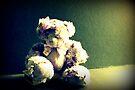 Verlorener Teddy von Evita