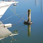 Mooring and Reflection by lizdomett