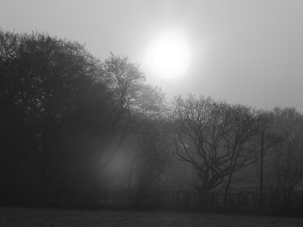 Sunrise by Nick Mooney