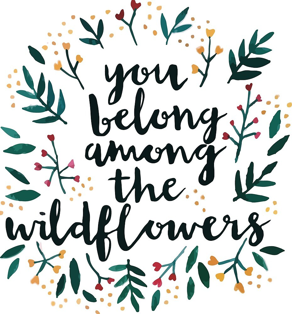 Among the Wildflowers by Claire Mabbett