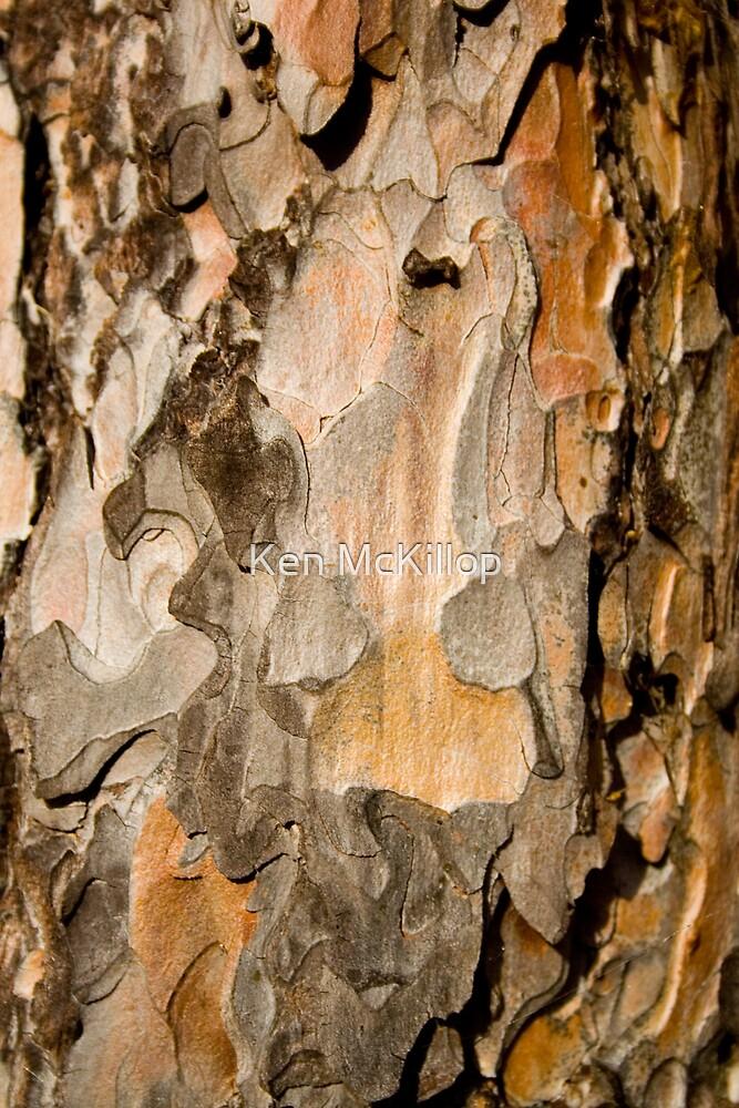 scots pine by Ken McKillop
