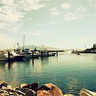 Boats At The  Marina by Evita