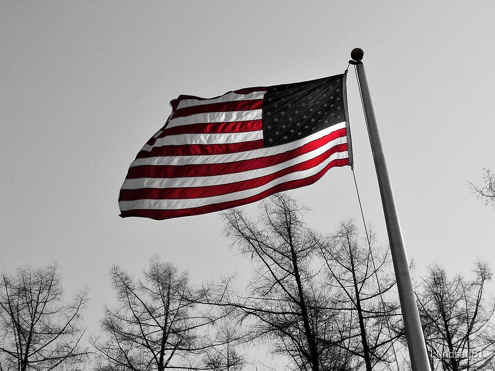 American Flag by Lyndsay81
