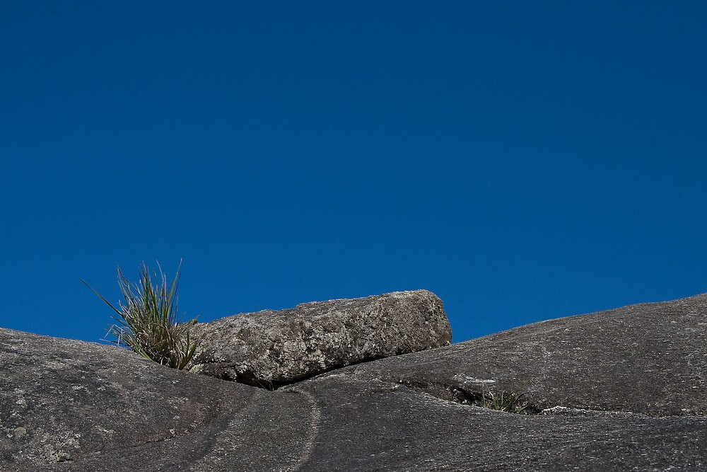 Rock and the Sky by Ian Robertson