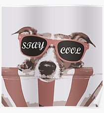 Stay Cool - Retro Colors Poster