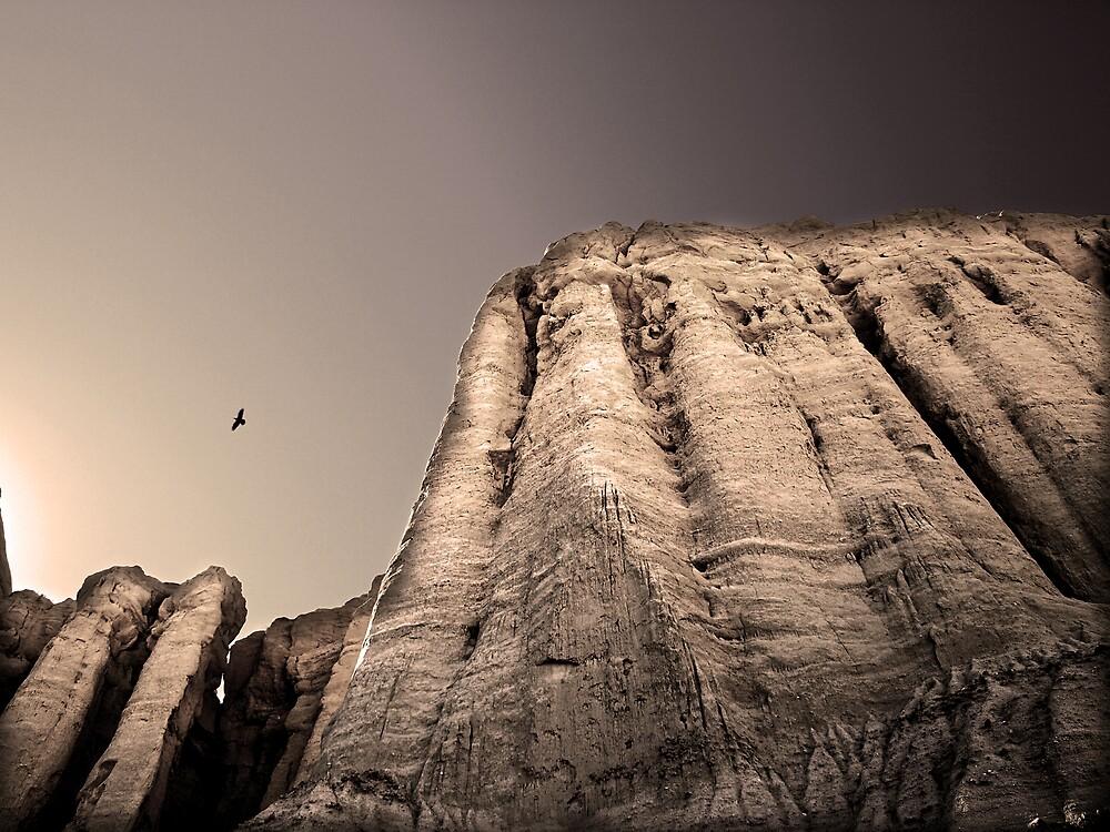 Vultures by ArieDee