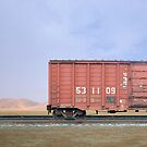 The Last Train by Mark Richards