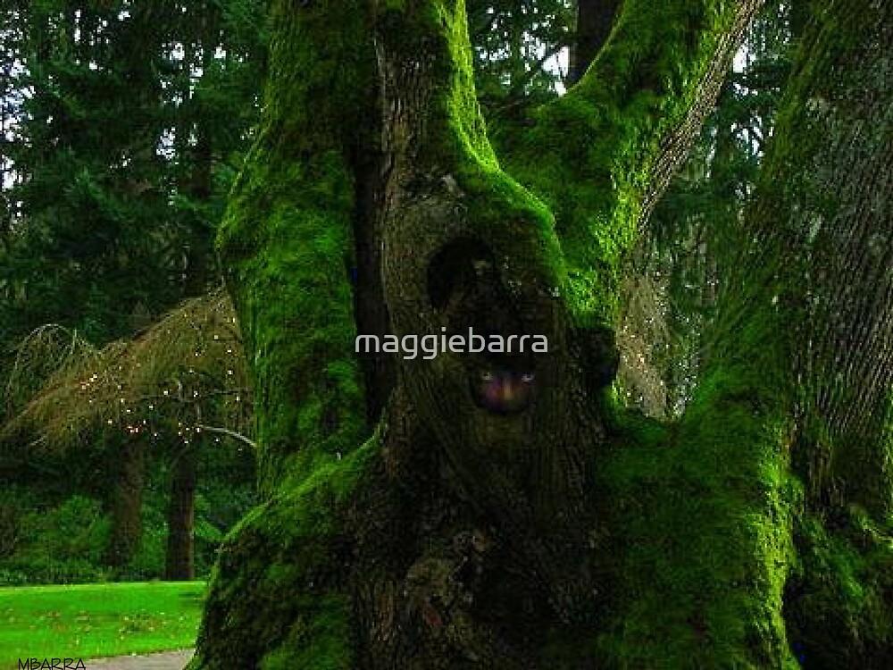 Tree Spirit by maggiebarra