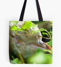 Got My Yellow Eye On You! - Yellow-eyed  Penguin - Rarest Penguin in the world - NZ Tote Bag
