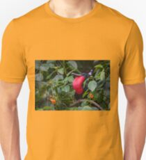 "Male Frigate with his impressive ""red chest"" Unisex T-Shirt"