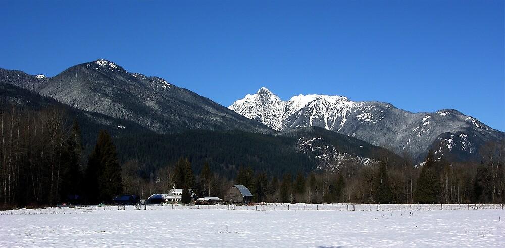 Cascade Mountain Landscape Four by Rick Lawler