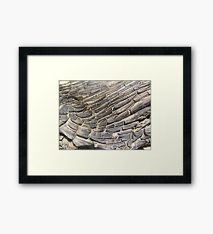 Timber Texture Framed Print