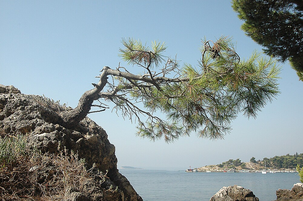View /Croatia/ by pivo