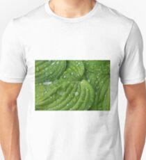 Grüne Hosta im Regen mit Tropfen Unisex T-Shirt