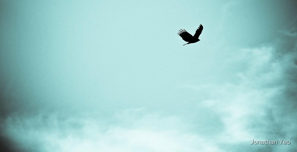 Flying High by Jonathan Yeo