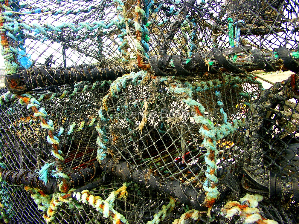 lobster pots by Catherine Beales