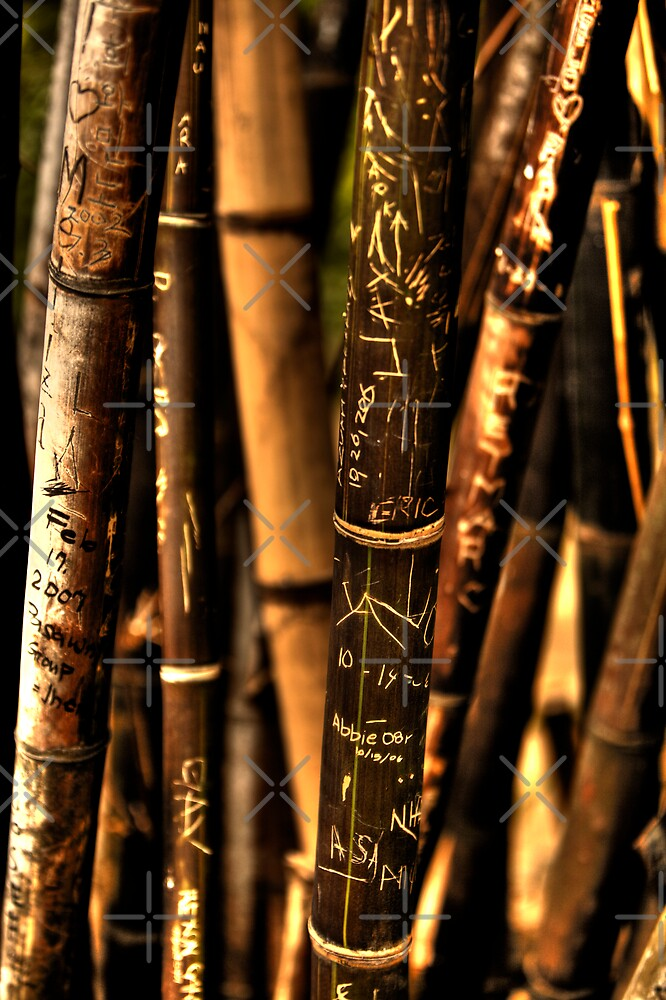 Another Bamboo Graffiti by Ben Pacificar