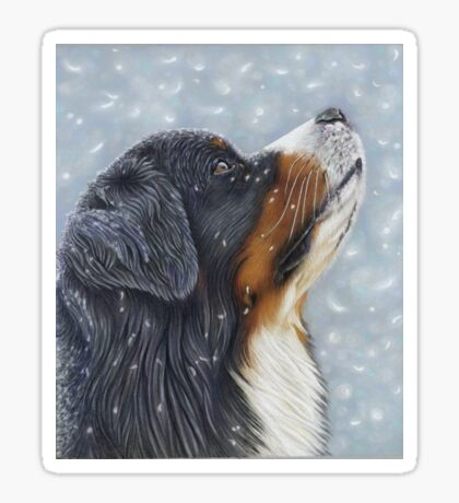 Blissful Blue - Bernese Mountain Dog Catching Snowflakes Sticker