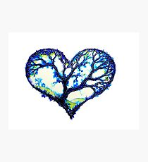 Home Is Where The Heart Is - Trees Photographic Print
