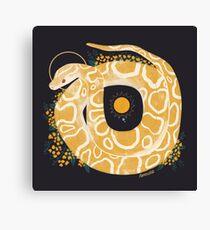 Lienzo Familiar - Python birmano