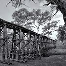Mollisons Creek Trestle Bridge by Linda Lees