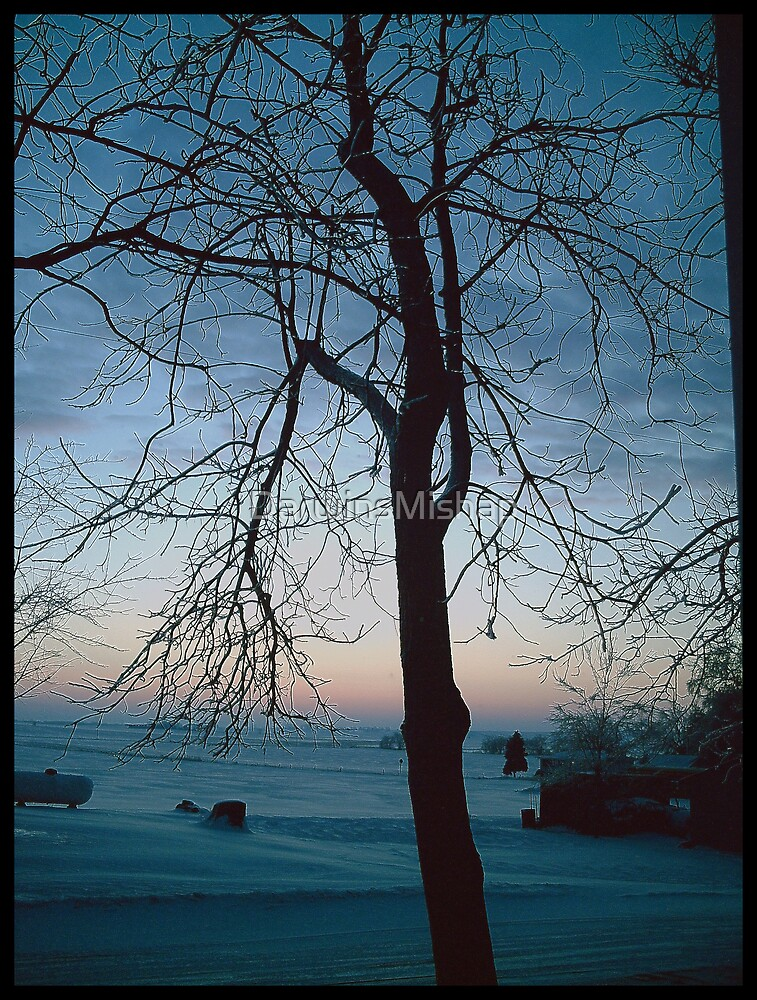 Winters Dawn by DarwinsMishap