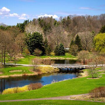 Spring Park Landscape by rollosphotos