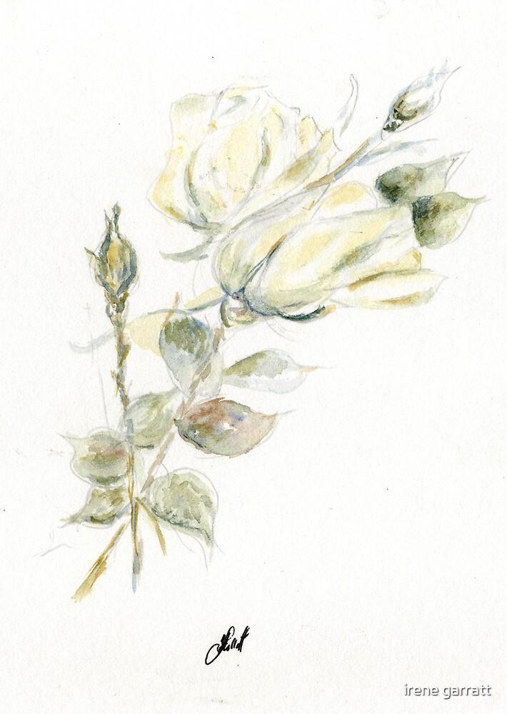 Wonderful tulip time by irene garratt