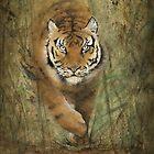 « Le Tigre » par Castel Yvonne