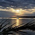 Twofold Bay,  Eden, NSW Australia by LisaRoberts