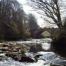 Old Bridge by Tom Gomez