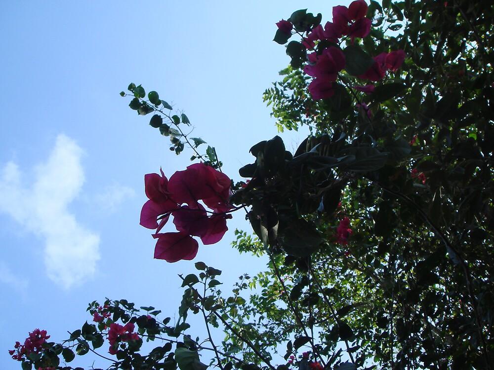 flower by bgsq2