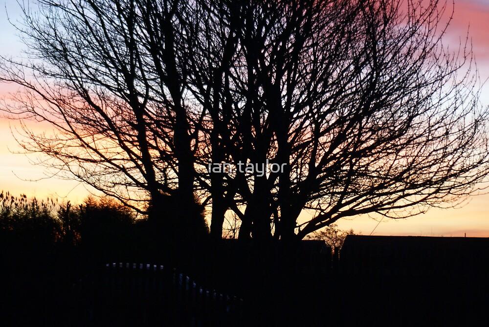 morning skys by ian taylor
