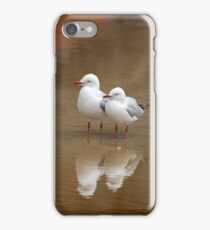Gulls reflection, NSW Australia iPhone Case/Skin