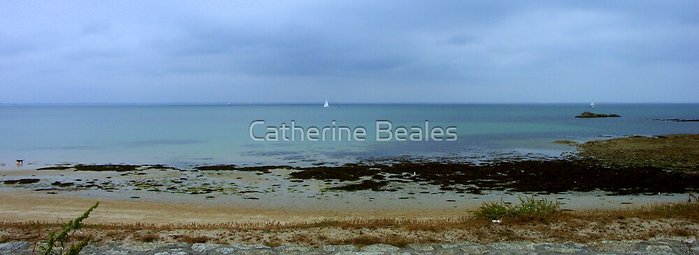 beach 2 by Catherine Beales