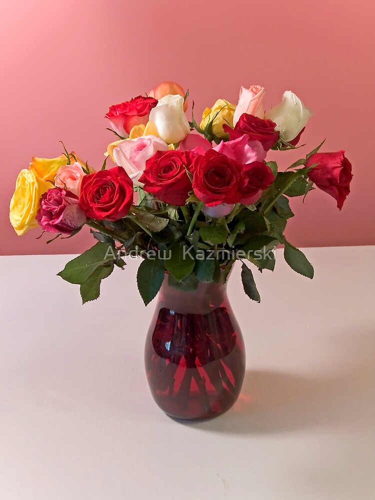 Roses in Vase by andykazie