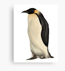 Penguin. Canvas Print