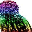Wise Owl by ShantyShawn