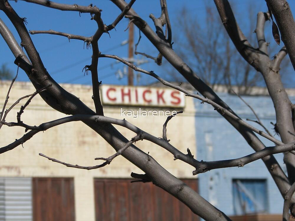 Chicks by kaylarenee