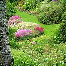 Maple Glen Gardens - Southland - NZ ** by AndreaEL