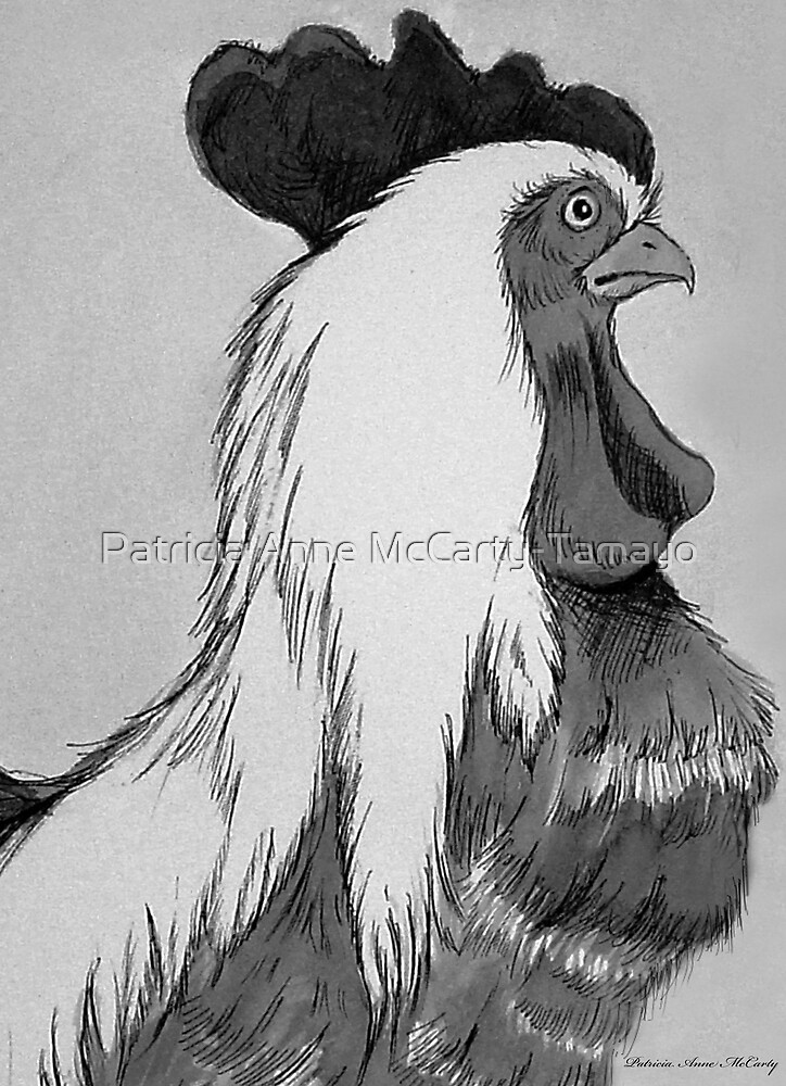 The Rooster by Patricia Anne McCarty-Tamayo