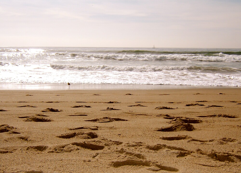 Footprints on the beach by TimDuck