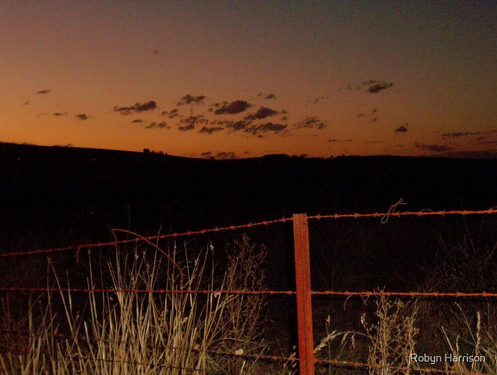 Bronze Sunset by Robyn Harrison