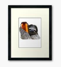 Drunk Sloth Framed Print