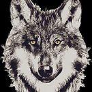 WOLF von fuxart