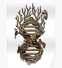 Infinitree of Life Poster