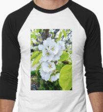 Apple Blossoms After Snow Men's Baseball ¾ T-Shirt