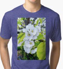 Apple Blossoms After Snow Tri-blend T-Shirt