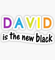 David is the new black, fun quote, famous names Sticker