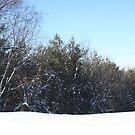 snow in wi by teddynanie